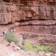 the trail belos Supai is certainly interesting!