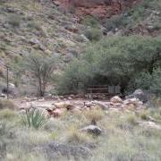 example of a campsite at Cottonwood Camp